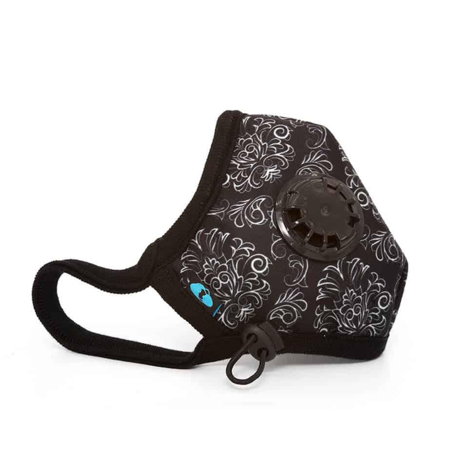 Cambridge N99 Standard Air Pollution Face Mask