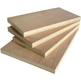 Apple Club Gurgen ISI Plywood
