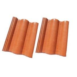 Eterna Pionnier Orange(Per Piece)