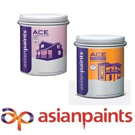 Asian Paints Exterior Ace